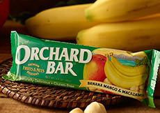 Banana-Mango Macadamia Orchard Bar