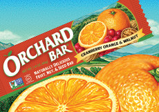 Cranberry Orange Orchard Bar